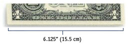 US $1 Bill - 6.125 inch (15.5cm) wide